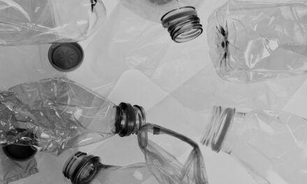 Single-Use Plastics: Don't Be Left Holding the Bag